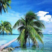 4* Azanzi Beach Hotel - Zanzibar